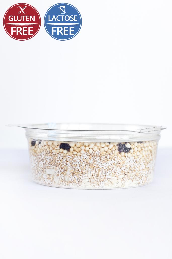 granola-brakfast-nolact